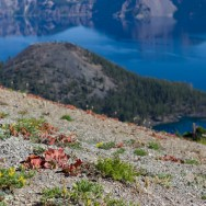 notworkrelated_usa_roadtrip_crater_lake_16