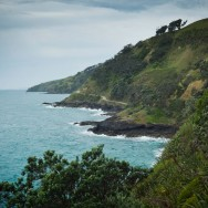 notworkrelated_nz_coromandel_peninsula_11