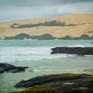notworkrelated_nz_kauri_coast_03