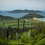 notworkrelated_nz_matauri_bay_07