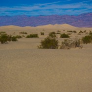 notworkrelated_usa_road_death_valley_13