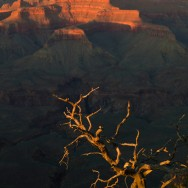 notworkrelated_usa_road_grand_canyon_25