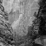 notworkrelated_usa_road_zion_05
