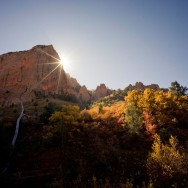 notworkrelated_usa_road_zion_31