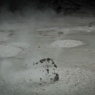 notworkrelated_nz_wai-o-tapu_24