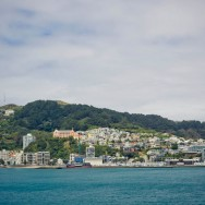 notworkrelated_nz_wellington_14