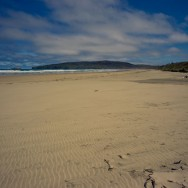 notworkrelated_new_zealand_caitlens_coast_10