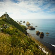 notworkrelated_new_zealand_caitlens_nugget_point_03