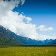 notworkrelated_new_zealand_fiordland04