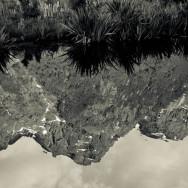 notworkrelated_new_zealand_fiordland06