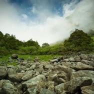 notworkrelated_new_zealand_fiordland15