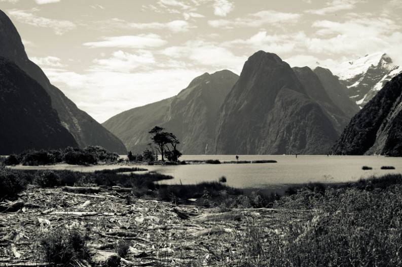 notworkrelated_new_zealand_milford_sound07