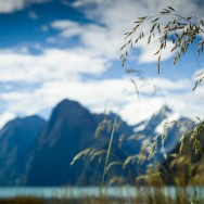 notworkrelated_new_zealand_milford_sound09