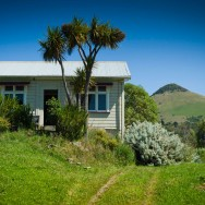 notworkrelated_new_zealand_otago_peninsula_09