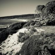 notworkrelated_australia_margret_river_06