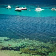 notworkrelated_australia_rottnest_island_08