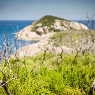 notworkrelated_australia_wilsons_promontory_19