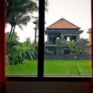 notworkrelated_bali_ubud_01