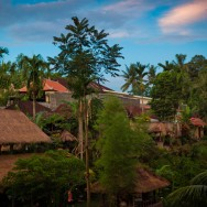 notworkrelated_bali_ubud_13