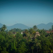 notworkrelated_bali_ubud_26
