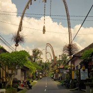 notworkrelated_bali_ubud_31