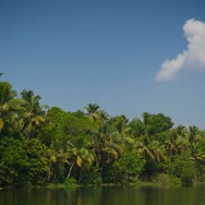 notworkrelated_india_kochi_backwaters_32