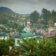 notworkrelated_india_munnar_08