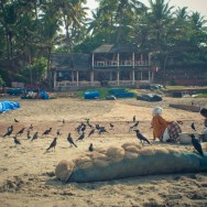 notworkrelated_india_varkala_47