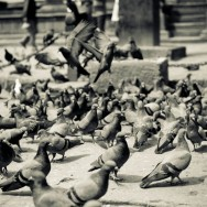 notworkrelated_nepal_kathmandu_54