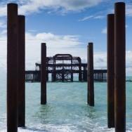 Brighton_36